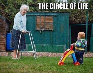The-circle-of-life