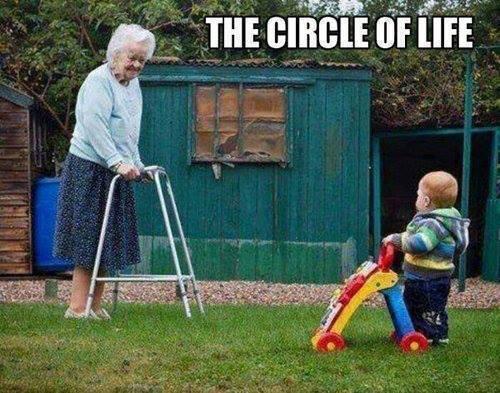 The-circle-of-life